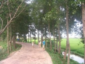duong lang used to be