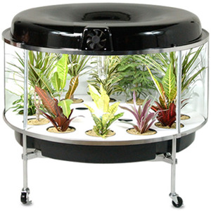 Hyd Spinner hydroponics smaller scale herb  year round