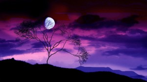 scary night sky or romantic or fantasy moon night pink violet purple sky?